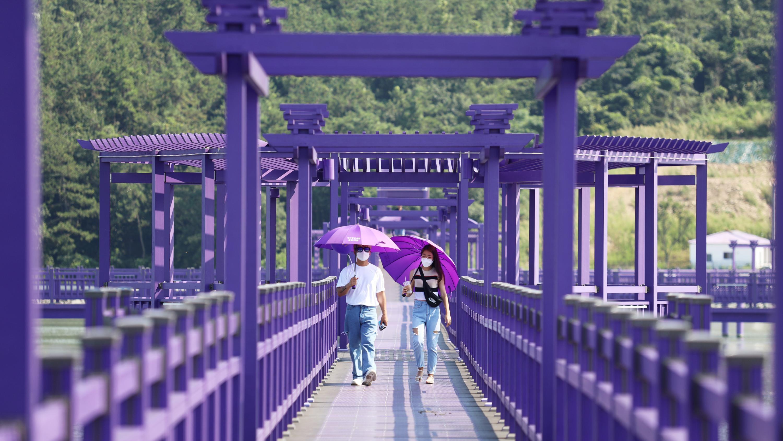 Purple Islands Activities