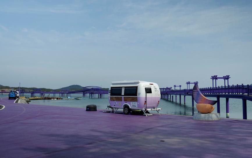 Korea Purple Islands Car
