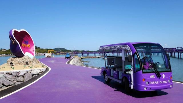 Purple Islands Transportation