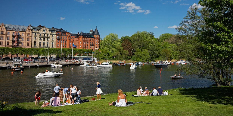 Stockholm garden