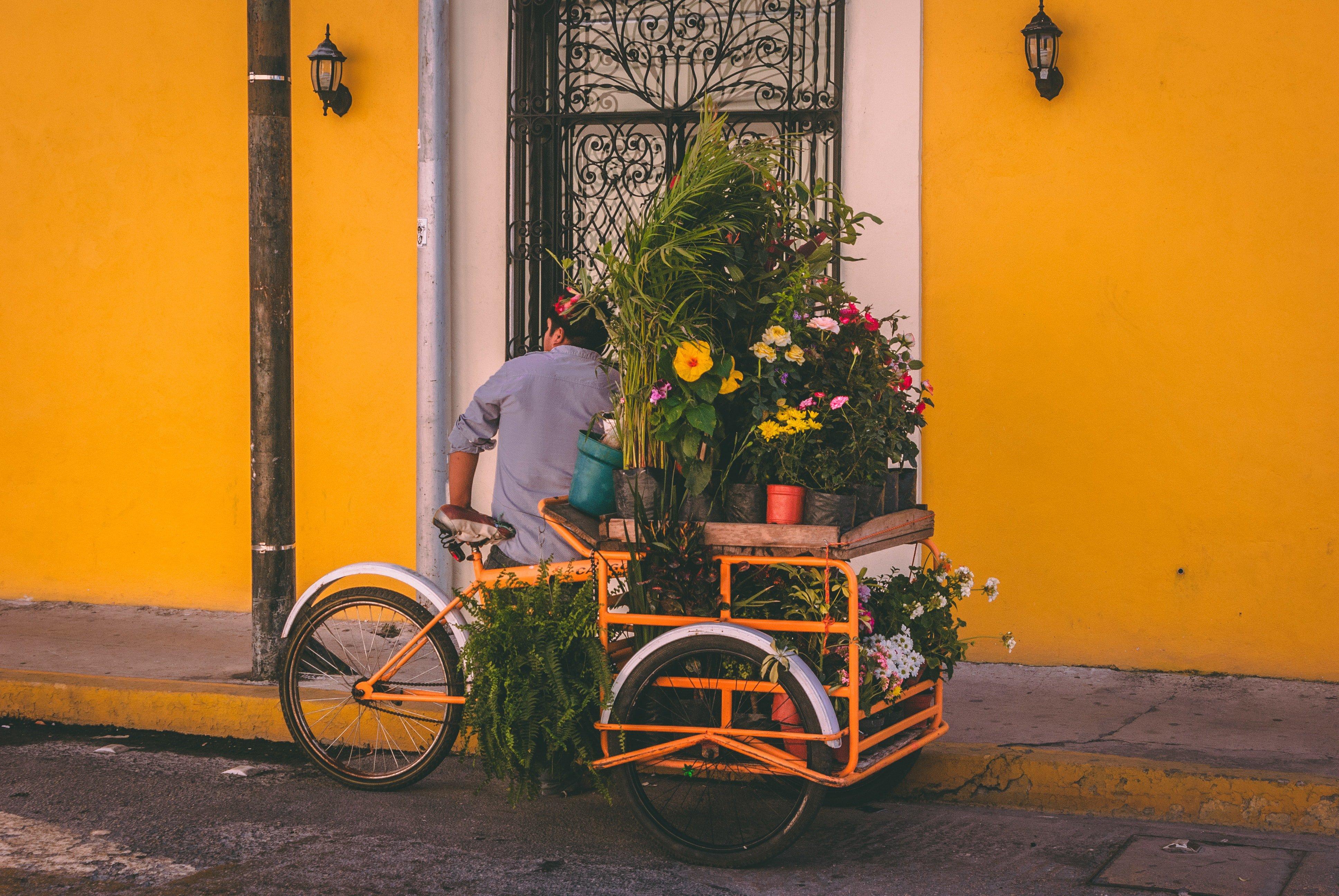 Mexico City Local